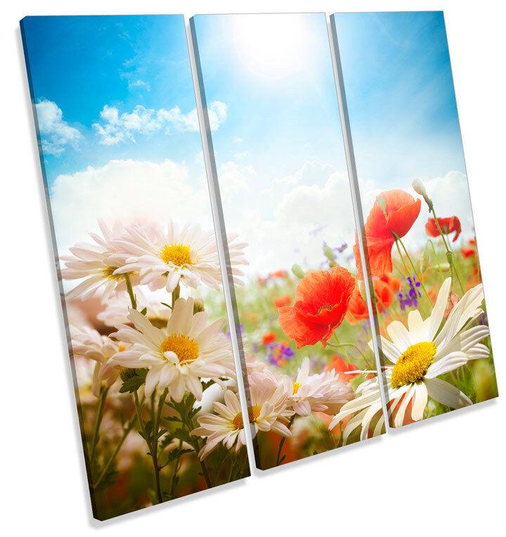 Campo di margherite a fiori TREBLE TELA Wall Art Art Art Quadrato foto stampa 122a55