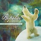 The Bipolar Manifesto: A Profile Checklist for Successful Outcome (Pcso) by Julia Mayo Phd (Paperback / softback, 2012)