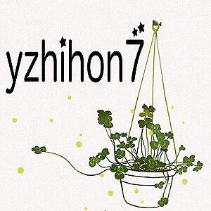yzhihon7