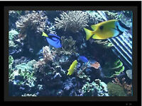 Digital Picture Frame Aquarium Videos