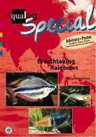 Aqualog Special, Breathtaking Rainbows