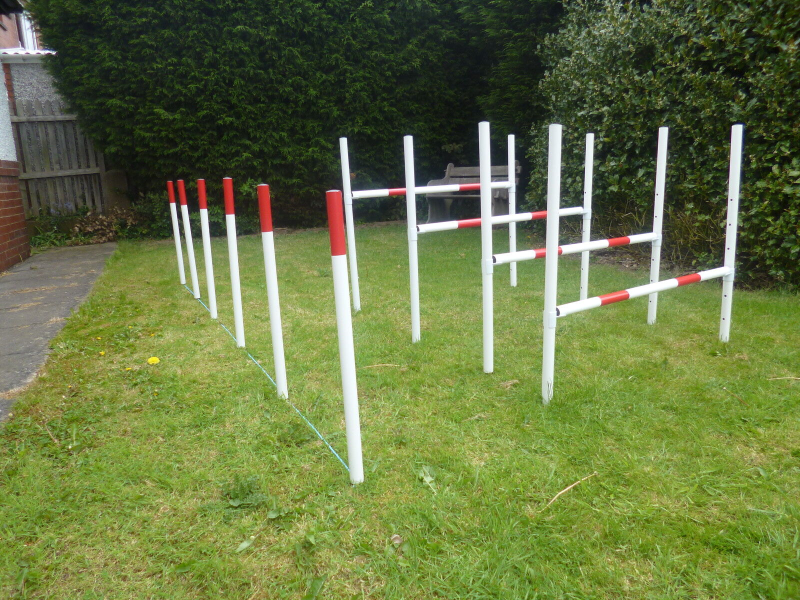 Johns agility dog training, obedience, pet supplies, competition training.