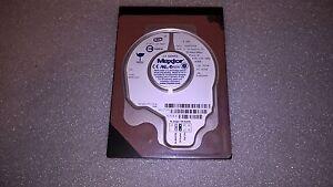 Hard-Disk-Maxtor-DiamondMax-Plus-8-6E040L0-711014-40GB-7200RPM-ATA-133-IDE