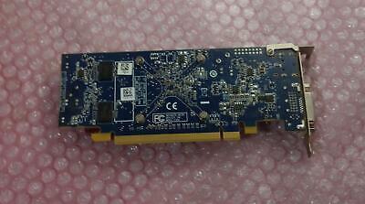 Dell AMD Radeon HD 6450 1GB Graphics Card  DVI /& Diaplay Port 06XMMP