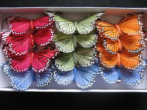 Deko Schmetterlinge 12 Stk Schmetterling Am Clip Echte