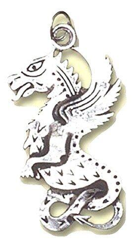 Beltane Drachen Keltisches Geburtsamulett Anhänger mit Kette - Sterlingsilver
