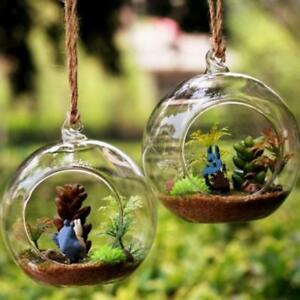Glass Bauble Hanging Christmas Decoration Terrarium Tealight Plant Ornament