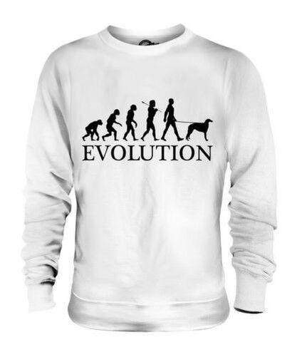 Barsoi Evolution des  Herrenchen Unisex Pullover Herren Damen Hund Russisch
