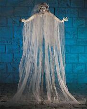 Halloween Bruja 2m Colgante Espeluznante Fantasma Decoración Fiesta Cortina Mostrar Prop BN