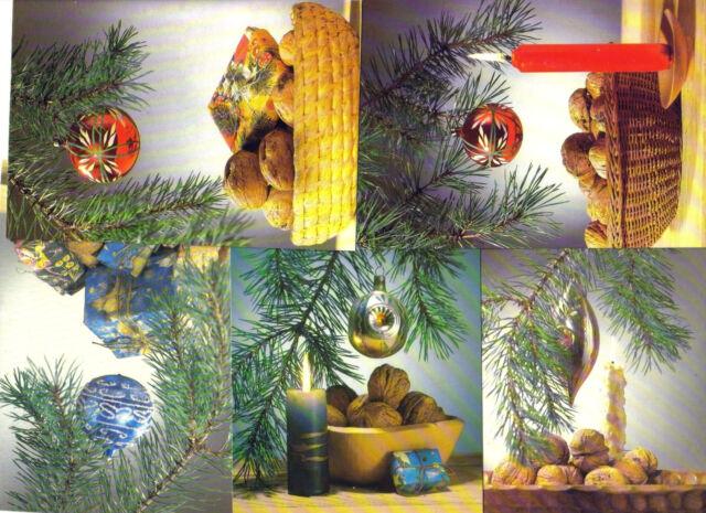 Weihnachtskarten Set Günstig.Ak Weihnachtskarten 5er Set Ddr Karten Christmas Neu 5 Stück Weihnacht Motive