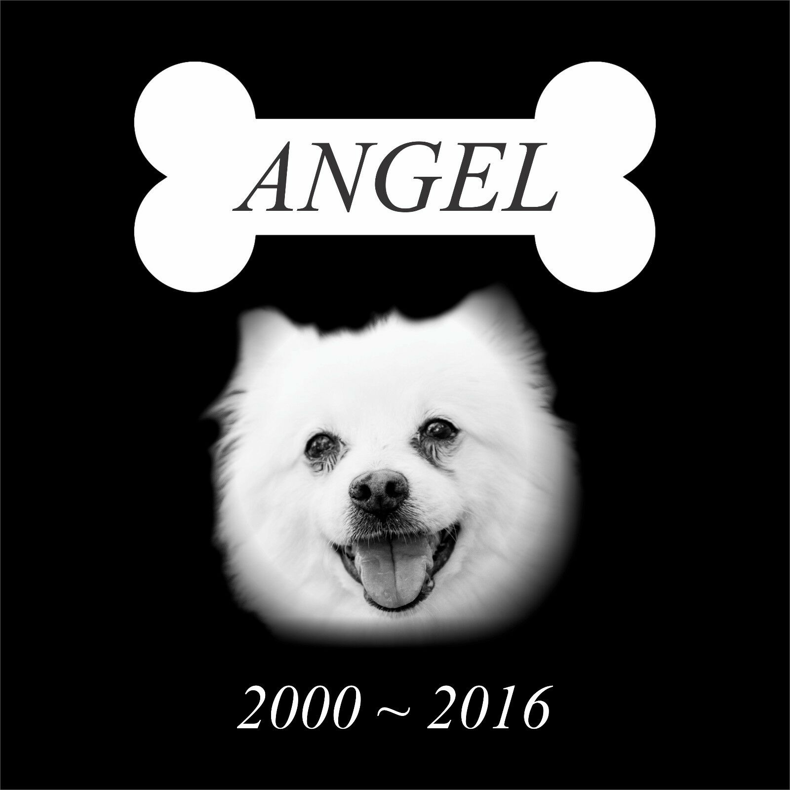 Personalized Pet Stone Memorial Grave Engraved Marker 12x12 Human cat dog 12813