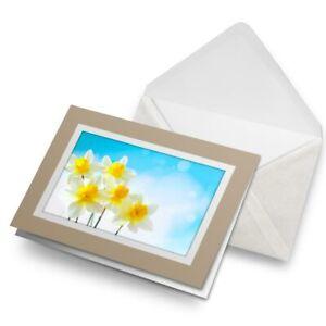 Greetings-Card-Biege-Yellow-Daffodils-Flowers-Sun-2634