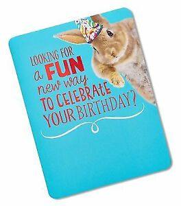 Buy American Greetings Funny Bunny Birthday Card With Music Online