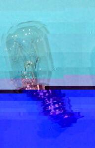 Bulb Microwave 20w E17 125v Light Bulbs Microwave Ebay