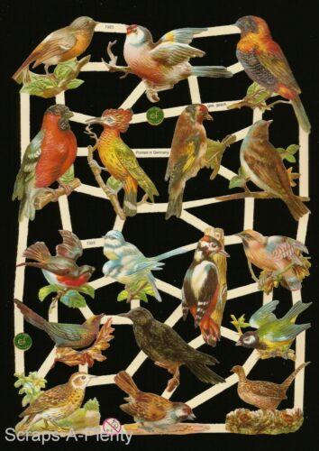 Beautiful Birds /& Nests EF7323 German Embossed Victorian Style Scrap Die Cut
