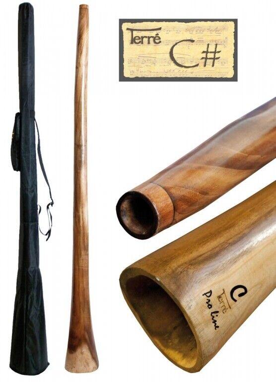 Didgeridoo aus Eukalyptus Tonhöhe  CIS ca. 165-175 cm professionell Percussion