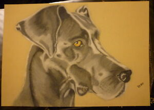 Great-Dane-Art-Print-A4-Matte-Blue-Dane-Dog-Art-Bargain-Price-Surplus-Stock