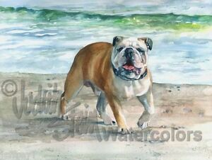 English Bulldog Dog Art Print of Watercolor Painting ...