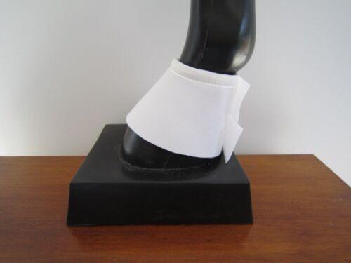 Horse Bell Boots 1 pr bellboots /& 1 pr backboots  AUSTRALIAN MADE Protection