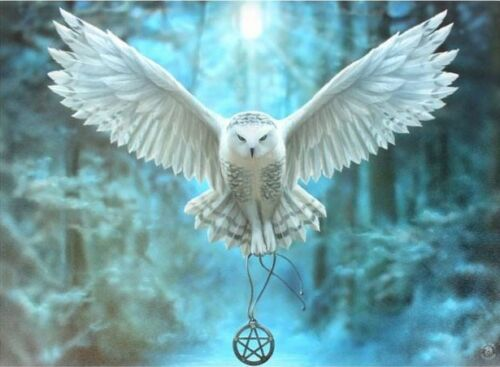 Gothic Owl Pentagram Anne Stokes Small Canvas Art Print Picture AWAKEN MAGIC