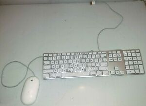 apple white aluminum usb wired keyboard mighty mouse imac g4 g5 emac a1243 a1152 ebay. Black Bedroom Furniture Sets. Home Design Ideas