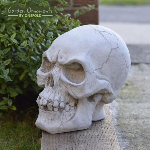 SKELETOR SKULL HEAD GARDEN ORNAMENT Cast Stone Sculpture HALLOWEEN  ⧫onefold-uk