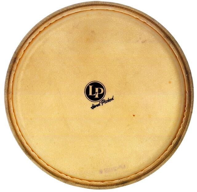 lp latin percussion galaxy 11 3 4 conga rawhide head for sale online ebay. Black Bedroom Furniture Sets. Home Design Ideas