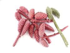 Trockenblumen Zapfenzweige 5 Zweige Zapfen Rosa gewachst 20 - 35 cm Dekoration