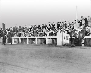 1938-Champion-Racehorses-SEABISCUIT-vs-WAR-ADMIRAL-Glossy-8x10-Photo-Poster
