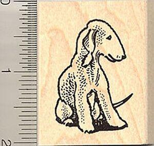 Cute Bedlington Terrier Sitting Rubber Stamp E8410 WM