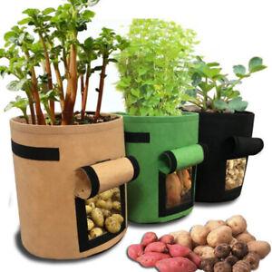 10 Gallon Plant Potato grow Bags pot flower fabric tomato veg garden planter