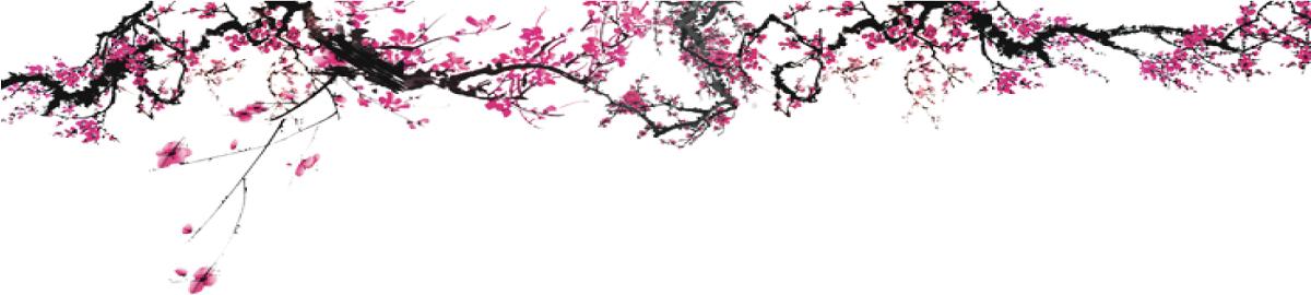 petalsandpaws