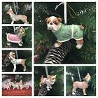 BEAUTIFUL DOG BREED CHRISTMAS DECORATIONS 4 ASSORTED BREEDS IN GLITTERY OUTFITS