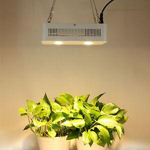 Image Is Loading 400W Cree CXA3070 COB Lens Led Grow Light
