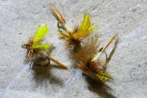 4 St MÄRZBRAUNE Trocken-Fliege # 12 Bachforelle Regenbogenforelle Forelle Äsche