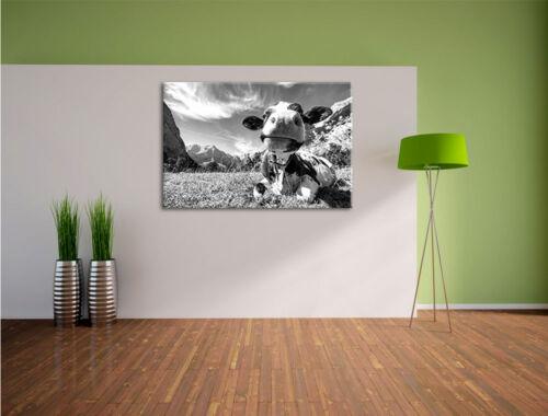 Kuh im Karwendelgebirge Kunst B/&W Leinwandbild Wanddeko Kunstdruck