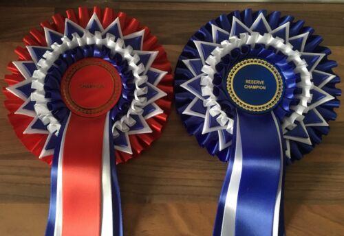 queues Gratuit 1st Classe Envoi Champion /& Reserve Champion rosettes avec 5 environ 45.72 cm 18 in