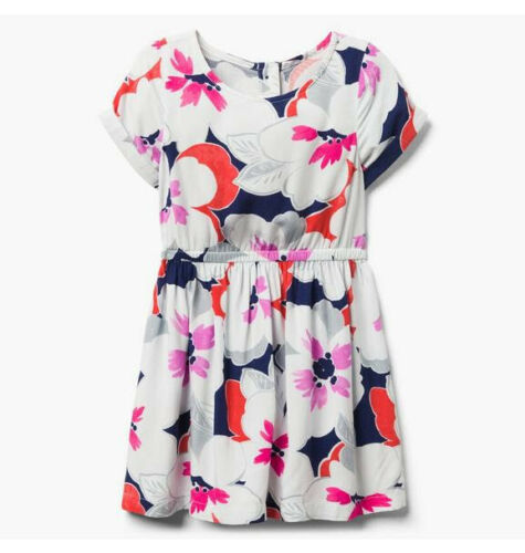 NWT Gymboree Girls Eiffel Flowers Floral Dress Size 6 7 8 10 12