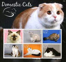 St Kitts 2015 MNH Domestic Cats 6v M/S Pets Birman Devon Selkirk Rex Shorthair
