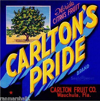 Wauchula Florida Carlton's Pride Orange Citrus Fruit Crate Label Art Print