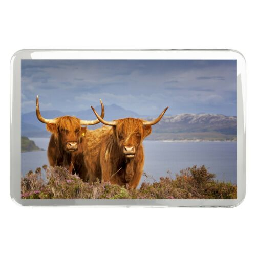 Scottish Highland Cows Classic Fridge Magnet Agricultural Farm Gift #16313
