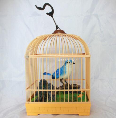 Singing Chirping Realistic Bird Cage Sound Movement Music Box Mechanic Toy Kids
