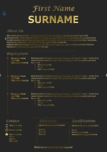 black and gold cv template with free cv review ebay