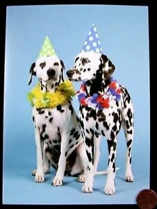 Birthday Greeting Card NEW Cute Puppy Dog Bow Biting Streamers Party Time