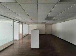 Renta - Oficina - Torre Summa - 217 m2 - Piso 6