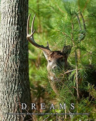 Whitetail Deer Motivational Poster Art Buck Deer Antler Sheds Bow Hunting MVP402