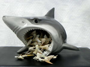 shark head retail store counter display shark tooth jaw shark teeth