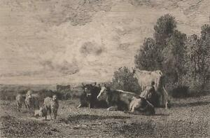 Constant-Troyon-Pasture-Effect-of-Sun-Cows-Etching-Delauney-Xixth