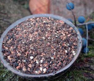 Krauterino 24-schlehdornfrüchte tagliati - 50g