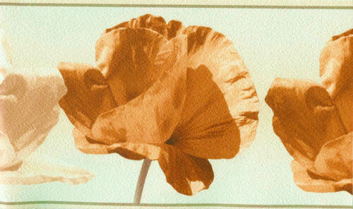 """0562-5-3 1 papel noble papel pintado cenefa cenefas /""""mohnblüte/"""" una sola vez Schick"""